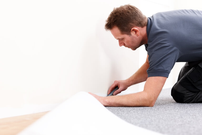 St. Louis Carpet Cleaning